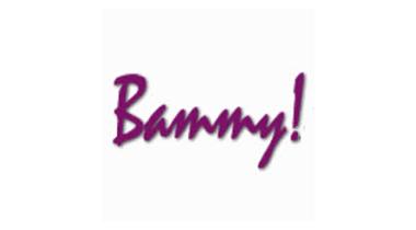 2013 Bammy Awards: Best Teaching Tool